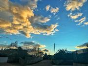 2nd Dec 2020 - Walking under a nice sunset ...