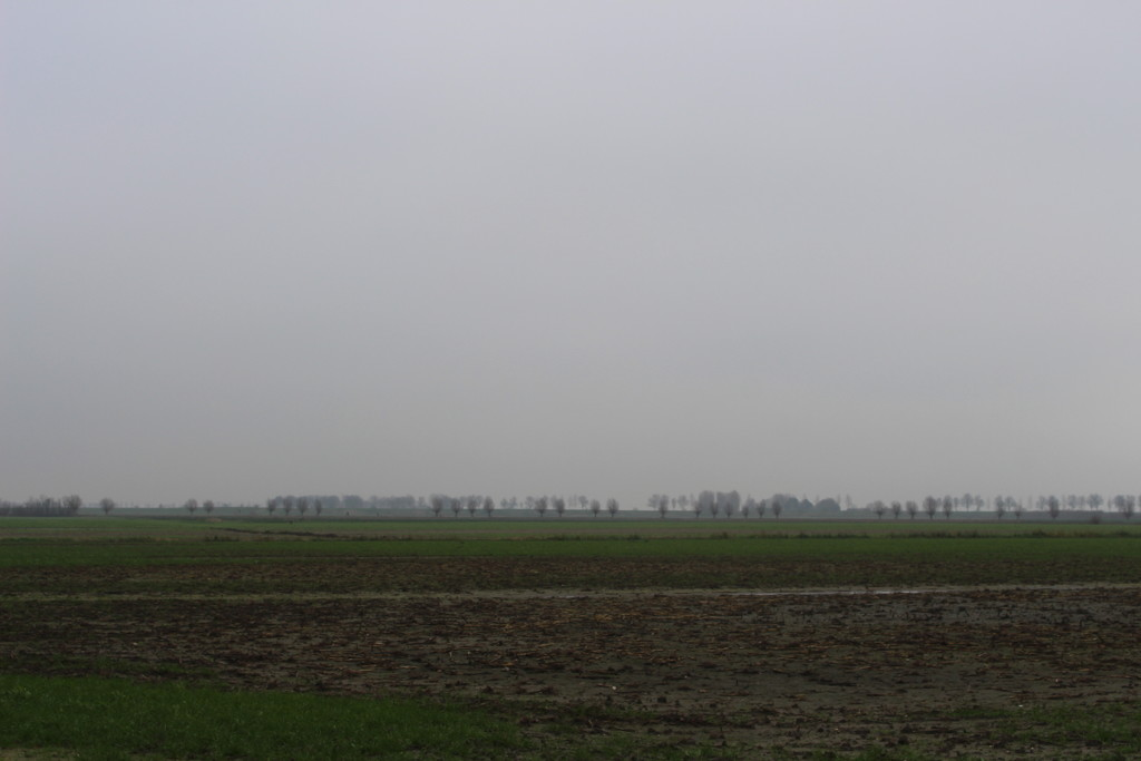 A grey sky and wet country by pyrrhula