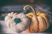 30th Nov 2020 - crocheted pumpkin