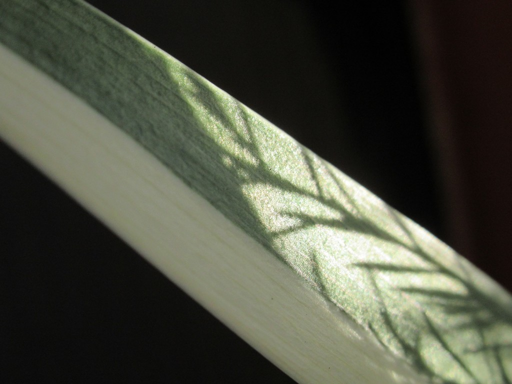 Shadow play - grass blade by granagringa