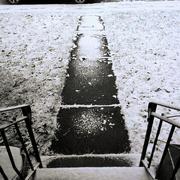 2nd Dec 2020 - Snow