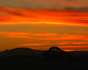 26th Nov 2020 - Another red sunset and silhouette