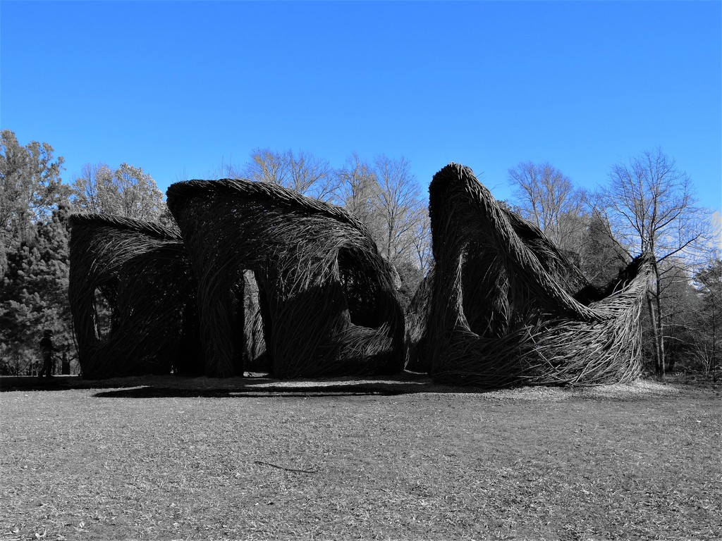 """Woven Willows """"Tilt A Whirl"""" by brillomick"""