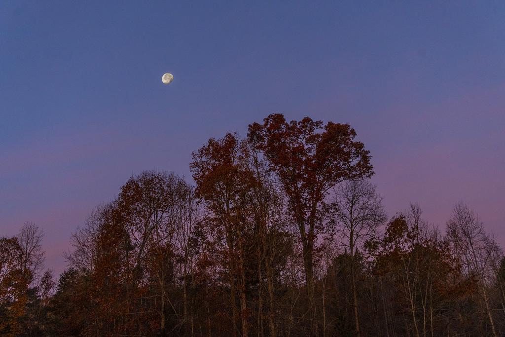 Western Morning Sky by k9photo