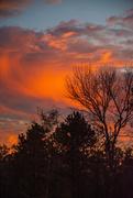 3rd Dec 2020 - That sunset...