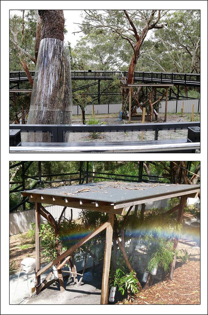 Koala Shelters by onewing