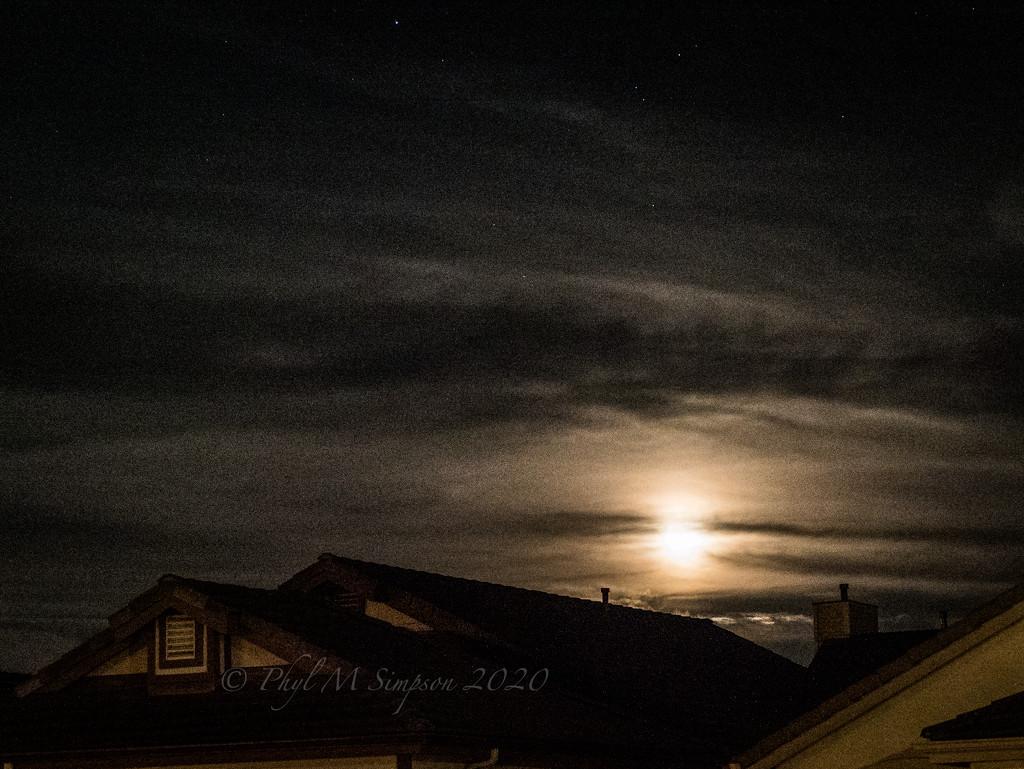 Evening Moon Rise by elatedpixie