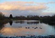 4th Dec 2020 - Late Afternoon beside Rawcliffe Lake