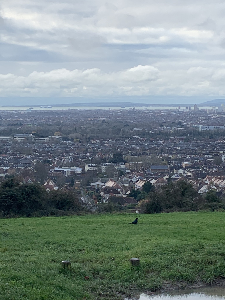 The view from Portsdown Hill by bill_gk