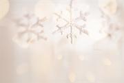 4th Dec 2020 - On December 4