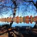 Green Lake Reflections by seattlite