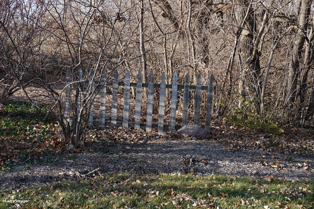 Lonely fence by larrysphotos