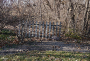 5th Dec 2020 - Lonely fence