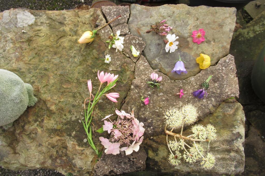 December flower grid by anniesue