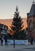 4th Dec 2020 - Wokingham Christmas Tree