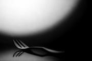 6th Dec 2020 - fork