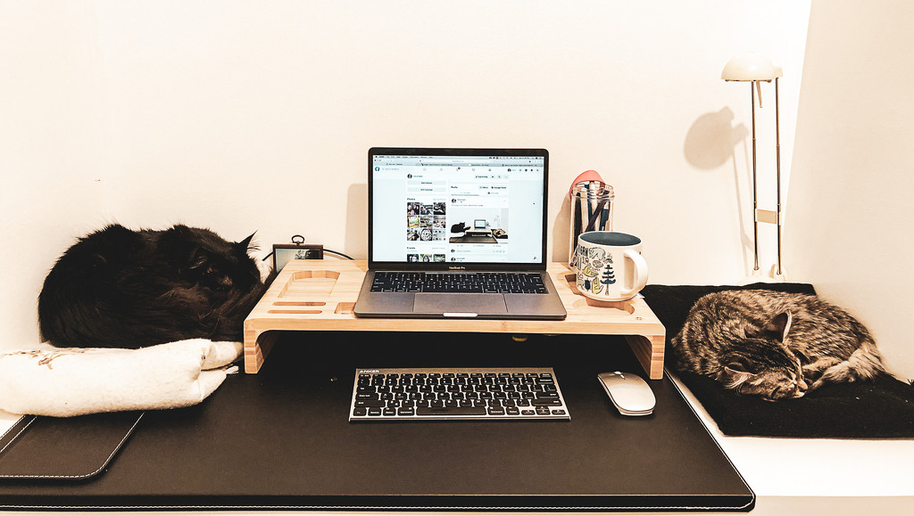 Working From Home by vera365