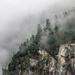 Misty Mountain