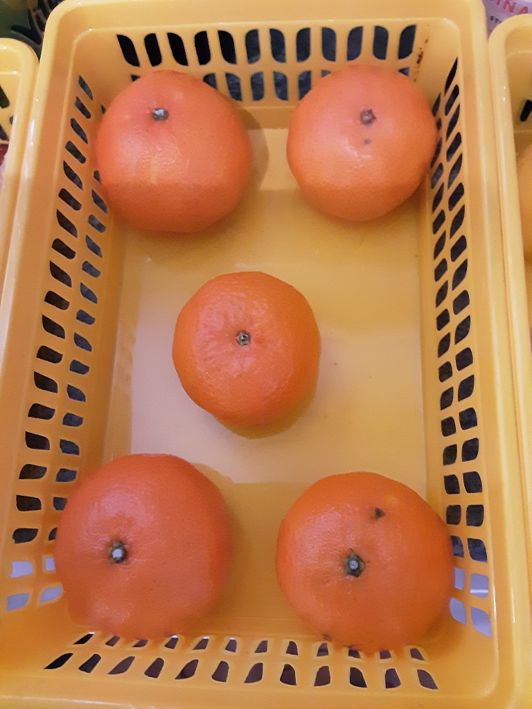 Clementine oranges by grace55