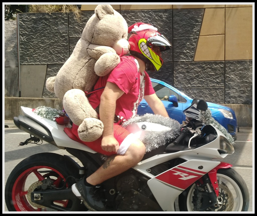 Annual Bikkie Christmas run to deliver teddy bears by 777margo