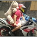 Annual Bikkie Christmas run to deliver teddy bears