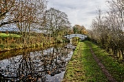 8th Dec 2020 - CANAL BRIDGE