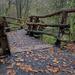 1208 - Bridge to the woods by bob65