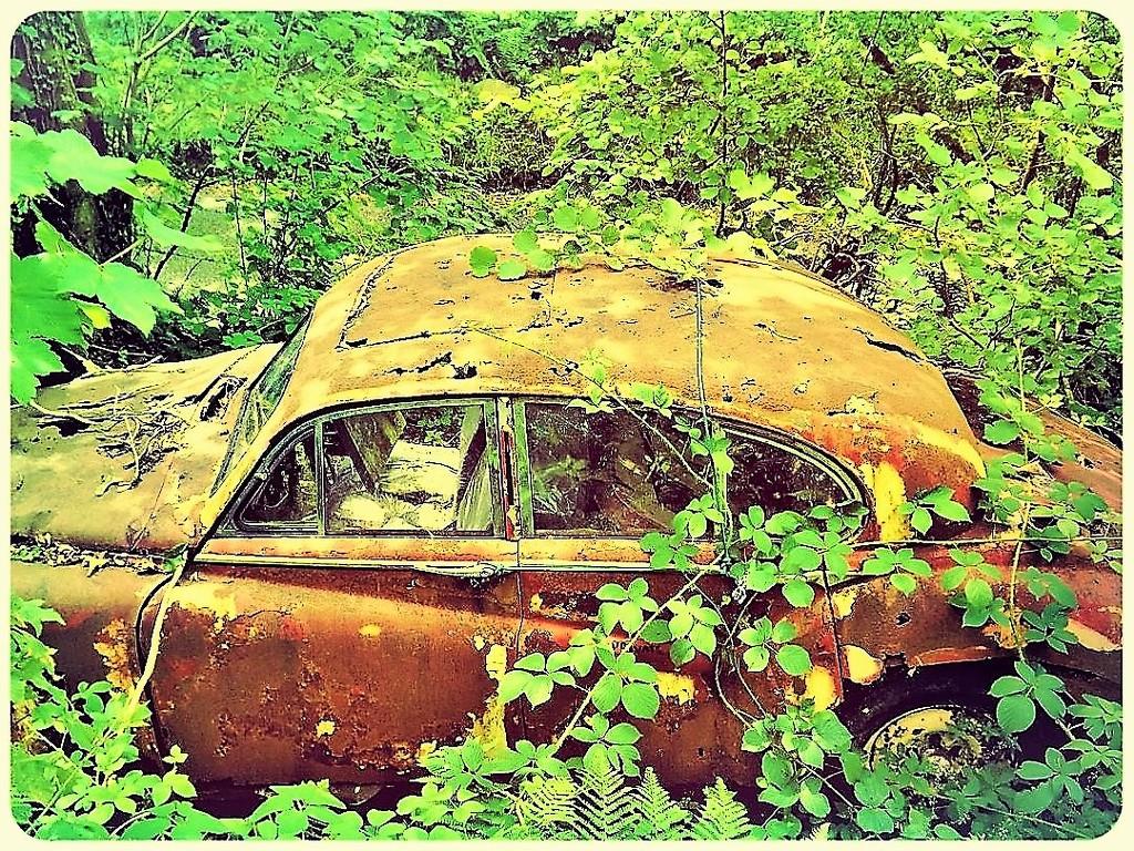 Rust in peace by ajisaac