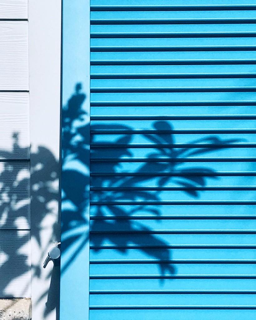 Blue by joemuli