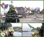 9th Dec 2020 - Lobster Pot Tree's Up!!