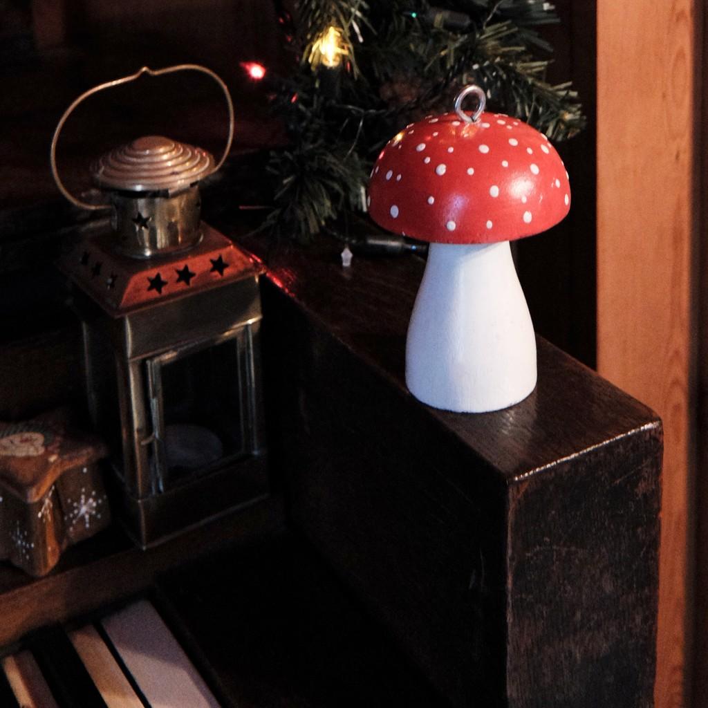 Christmas Mushroom by allsop