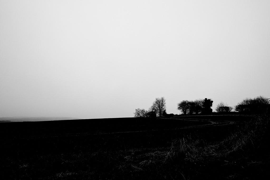 December Landscape 2 by allsop