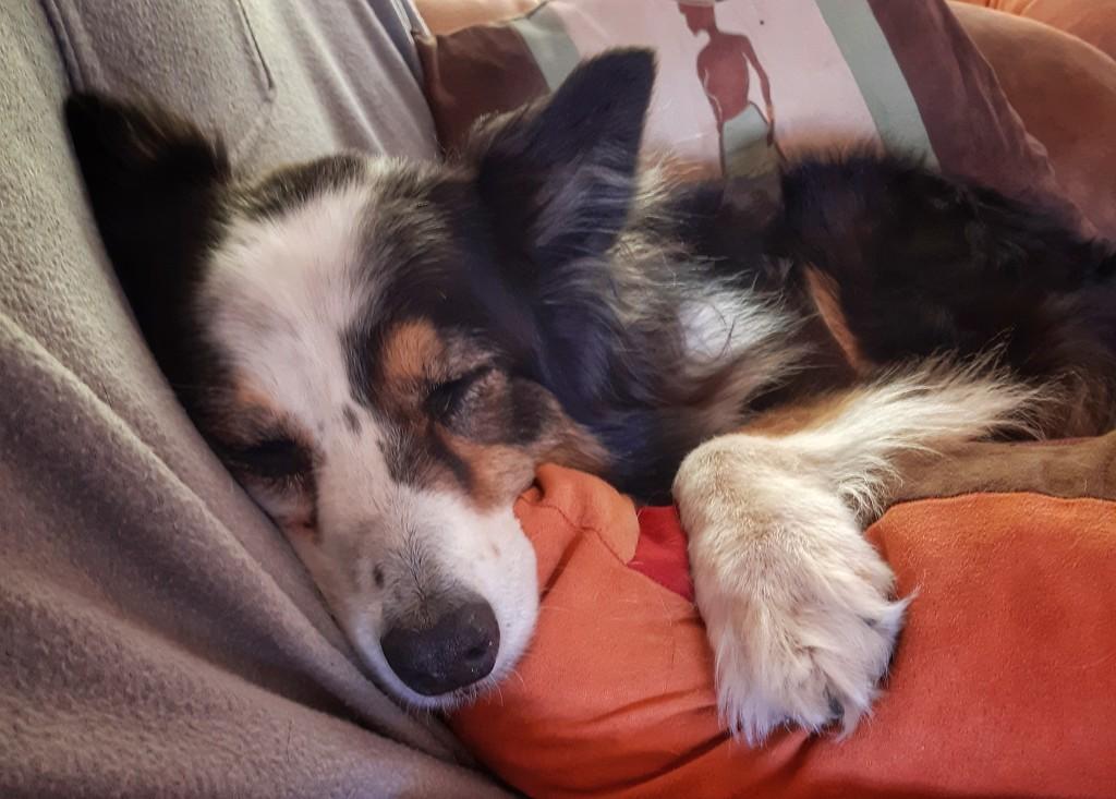 So comfy by salza
