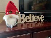 13th Dec 2020 - Santa gnomes are all the rage