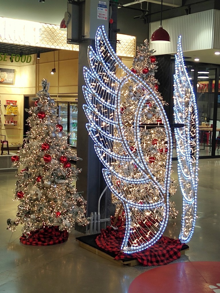 Christmas Tree and Angel Wings Display by bruni