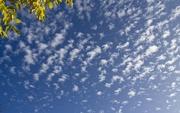 9th Dec 2020 - Clouds
