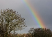 11th Dec 2020 - Good weather for rainbows