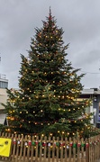 10th Dec 2020 - Woodley town Christmas tree