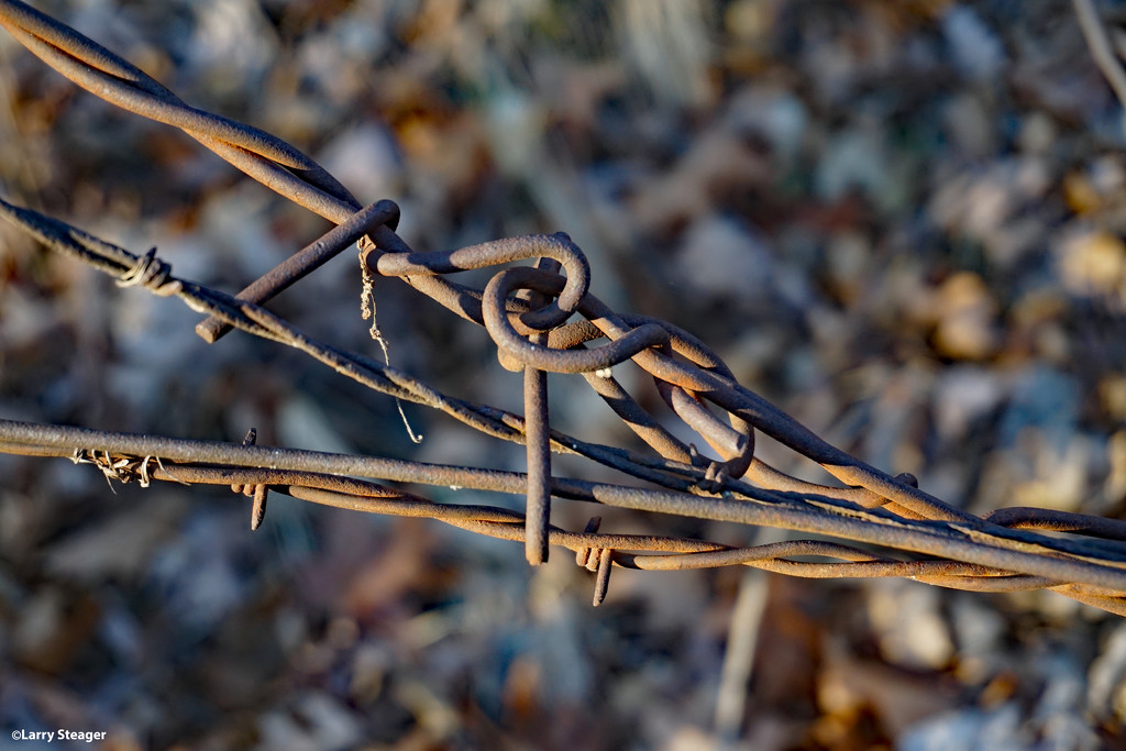 Twisted and rusted by larrysphotos