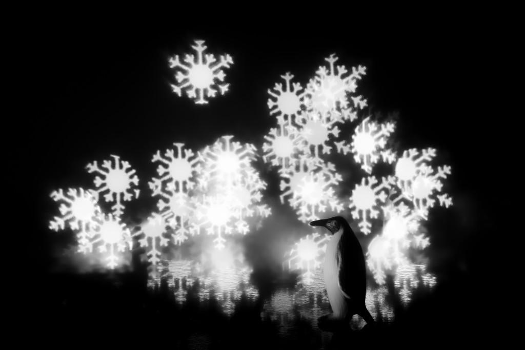 let it snow...  let it snow...  let it snow... by northy