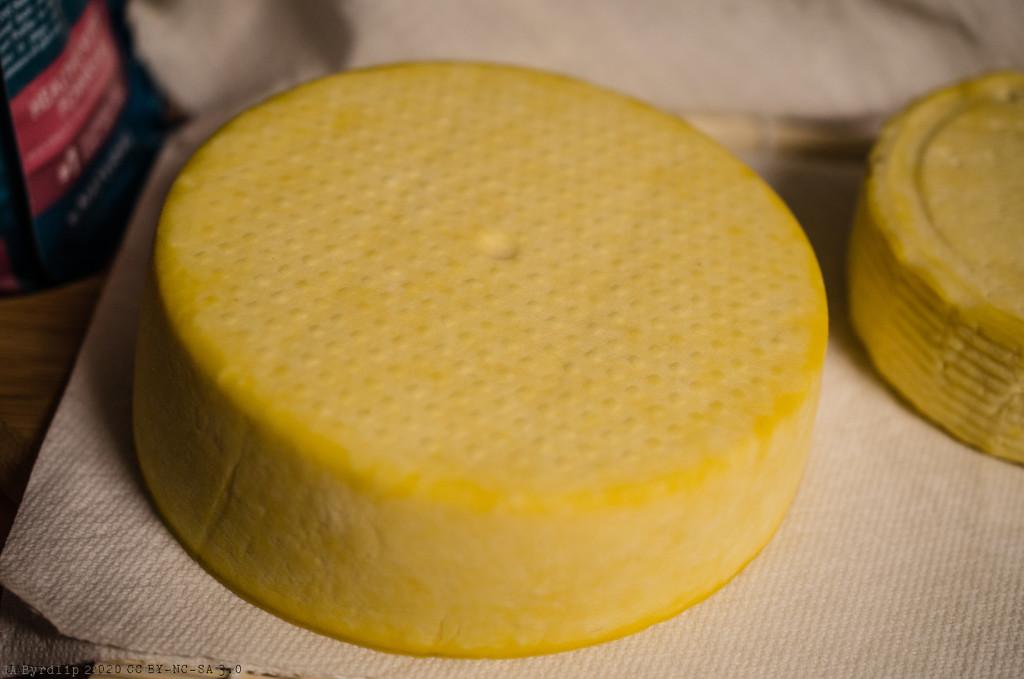 Say Cheese 2 by byrdlip