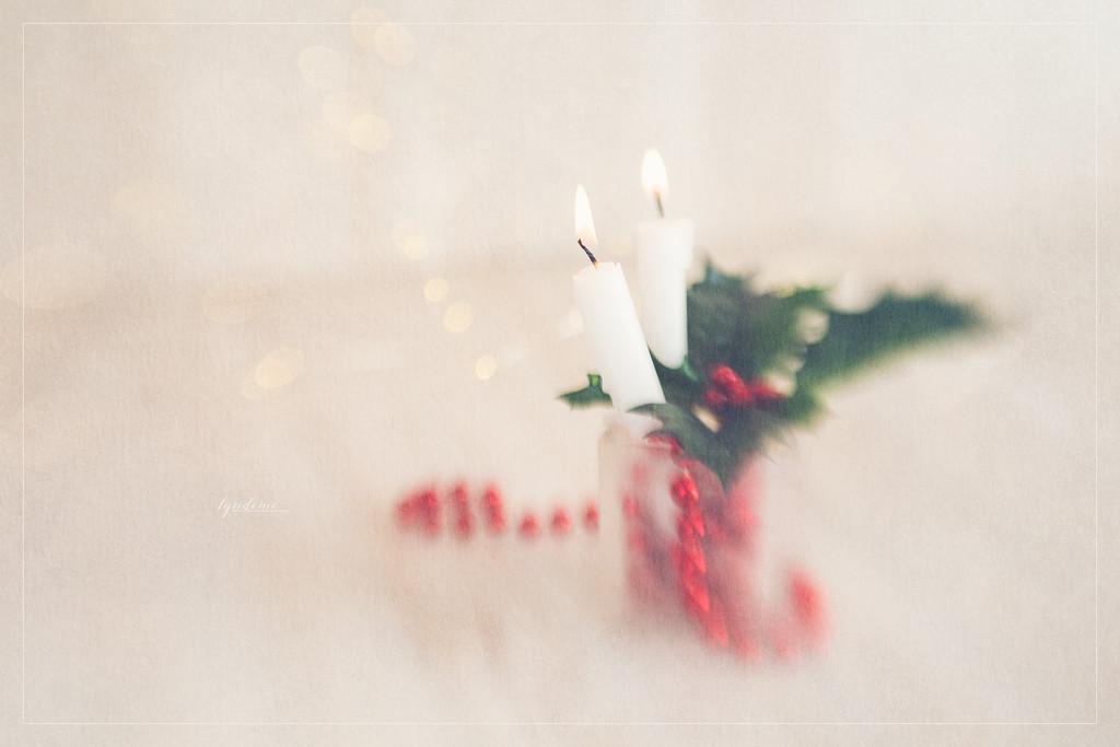 On December 14 by lyndemc