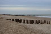 14th Dec 2020 - Hey babe, take a walk on the beach side...