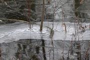 13th Dec 2020 - River ice