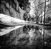 15th Dec 2020 - Wet walking path