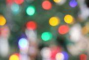 16th Dec 2020 - Christmas tree lights