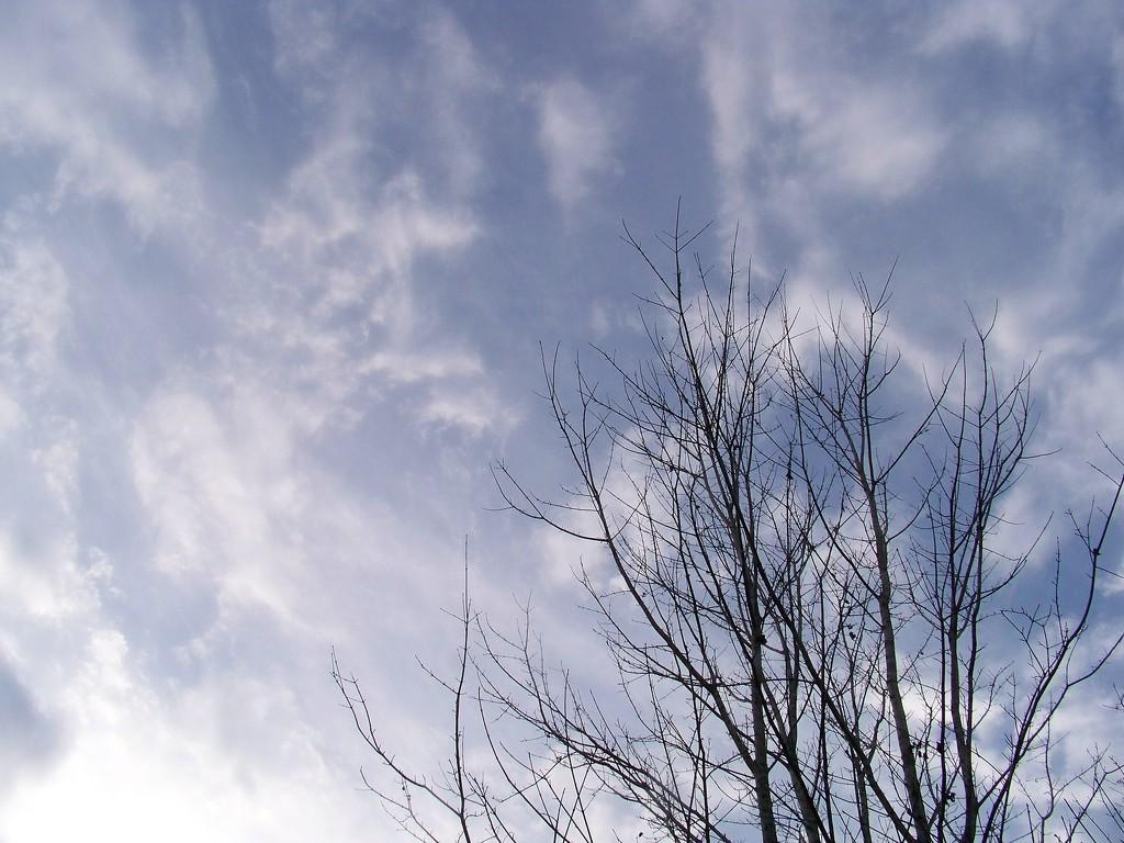 Wind spirit... by marlboromaam