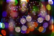 19th Dec 2020 - festive