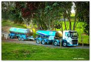 18th Dec 2020 - Milk Tanker and Pohutukawa's..