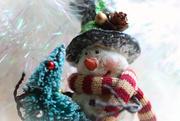 18th Dec 2020 - Frosty